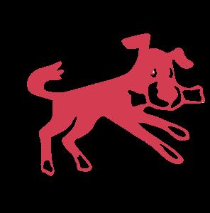 Hundesport in Diepholz und Bremen
